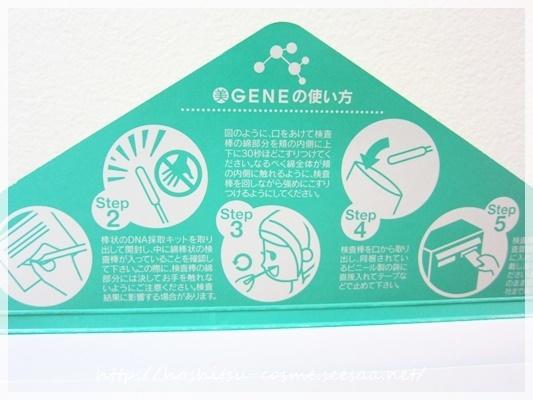 オリジナル化粧品遺伝子②hoshitsu-cosme.JPG
